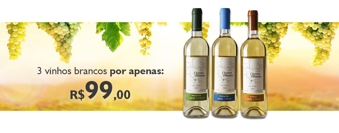 Promoção Vinhos Brancos