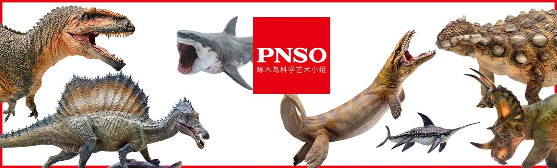 PNSO