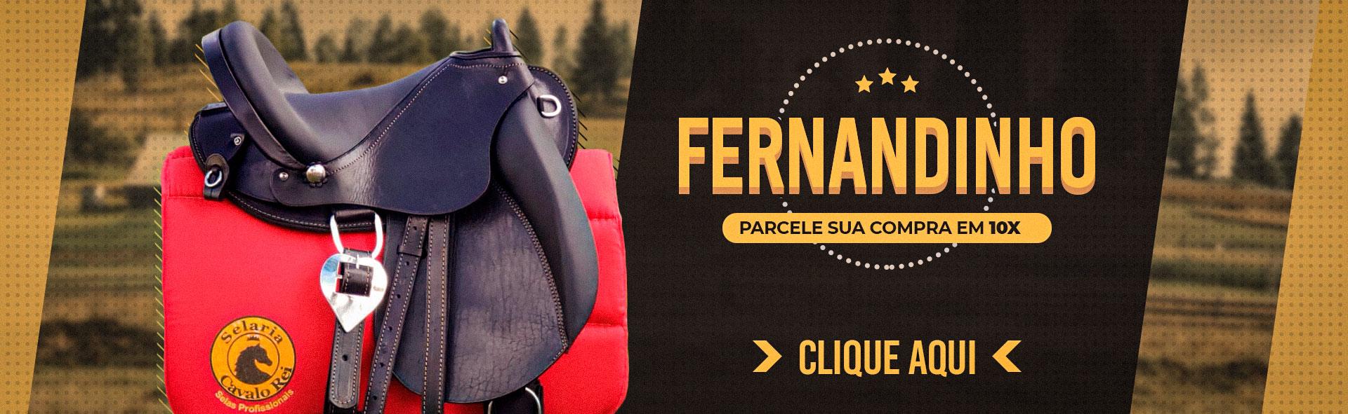 Banner da Fernandinho