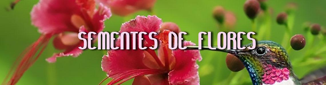 Compre Sementes de Flores