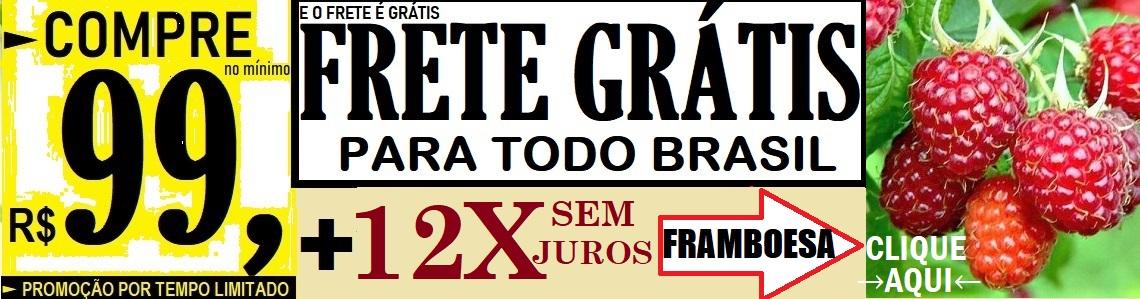 FRAMBOESA FRETE FREE