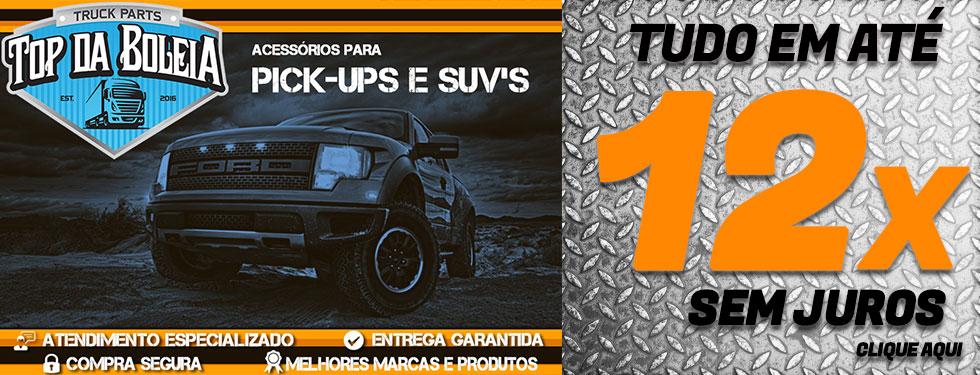 Pick Ups 12x