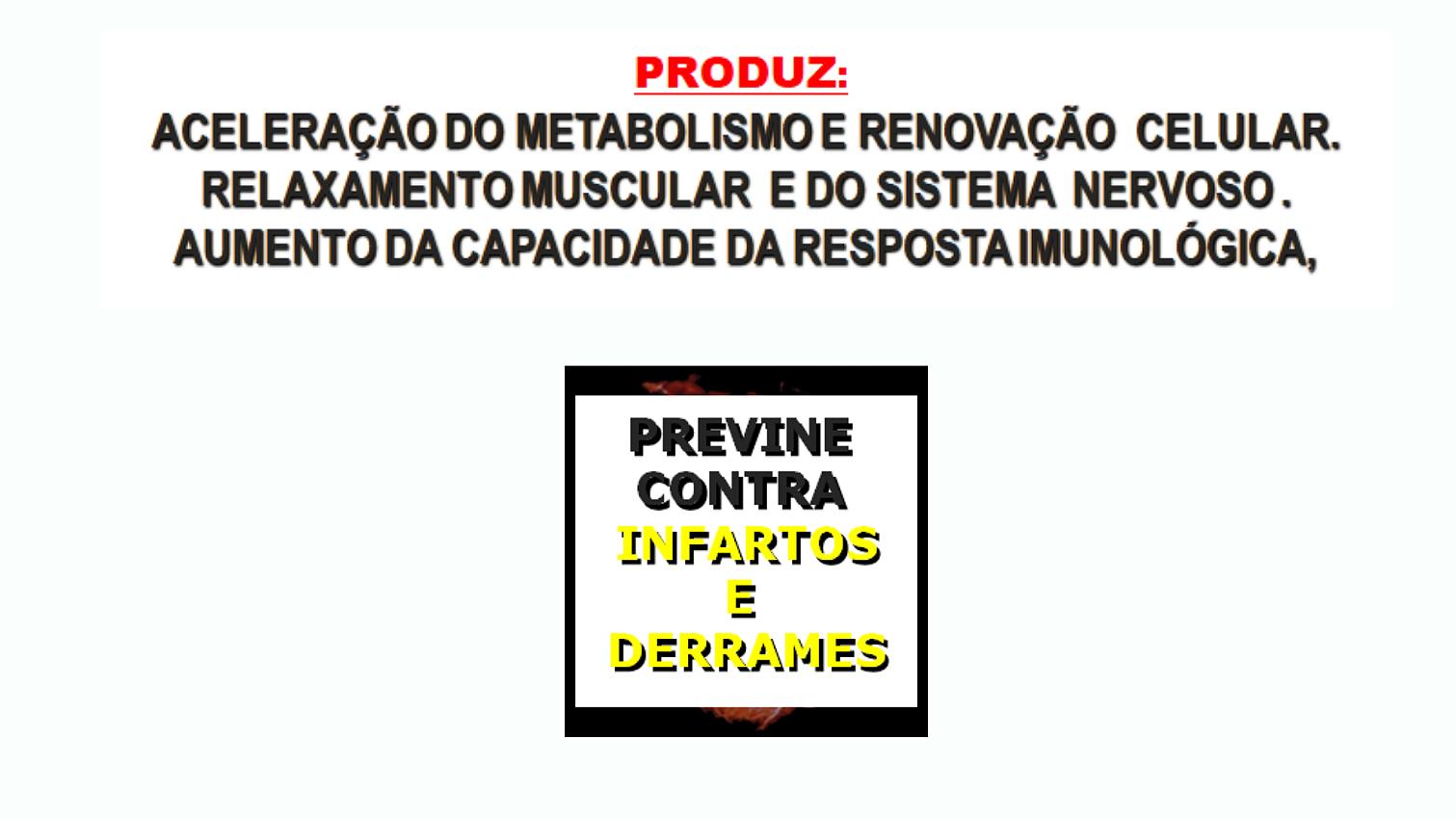 apresentação 23
