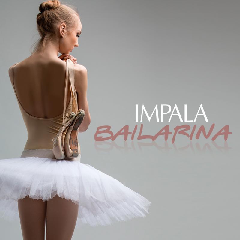 Impala Bailarina