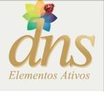 DNS Elementos