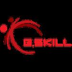 G. Skill