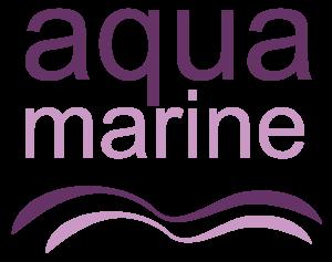 Aquamarine Acessórios