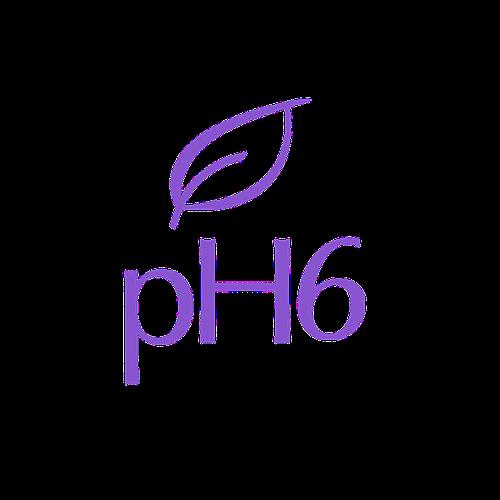 (c) Ph6.com.br