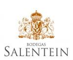Vinho Salentein
