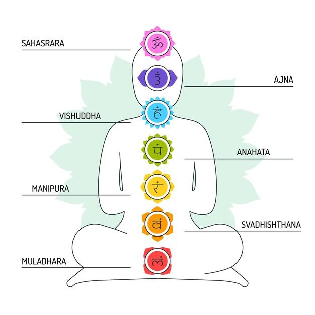 Os 7 Chakras - Fio Energético