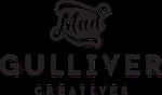 Mad Gulliver