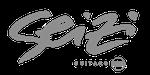 Seizi