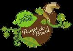 Linha Raízes do Brasil