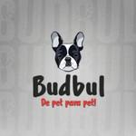 Budbul