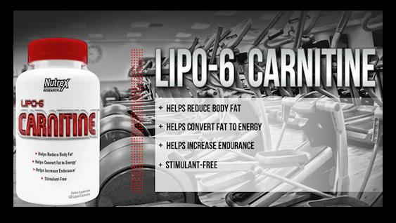 Lipo 6 Carnitine (60 Cápsulas) - Nutrex