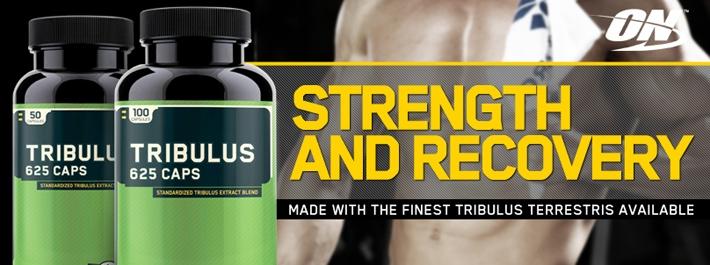 TopWay Suplementos - Tribulus Terrestris (100 caps) - Optimum Nutrition