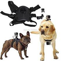 Gopro Go Pro Cachorro Suporte Canino Dog Lombar Cinturão