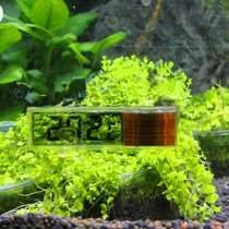 Termômetro Digital LCD Externo para aquários discreto 1 pc