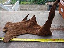 Tronco Natural Aroeira 30 com x 20 alt x 19 largura