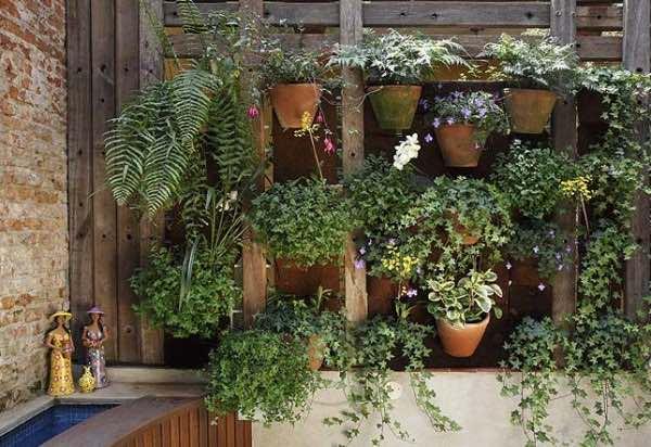 Imagem Jardim Vertical ou de Parede
