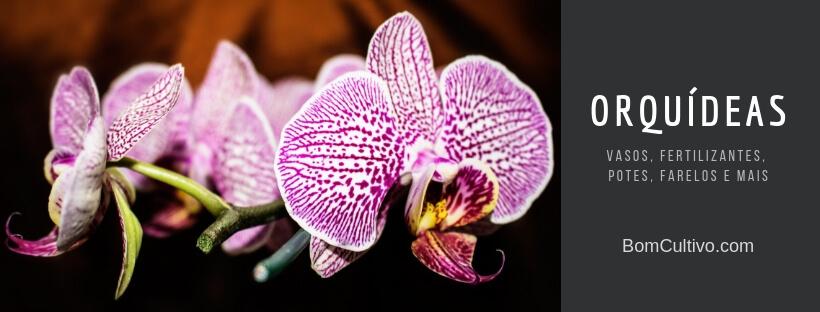 Acessórios para Orquídeas no Bom Cultivo