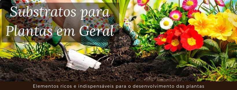 Imagem do banner Substrato para Plantas
