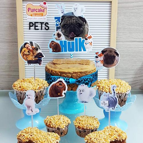 Festa Pets