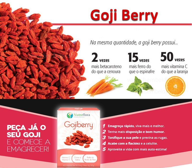 Gojiberry 500mg