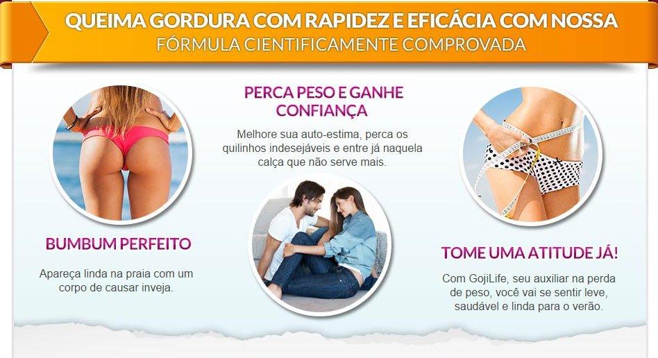 Goji Life Premium Original Loja Folha Verde