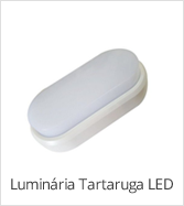 categoria tartaruga led