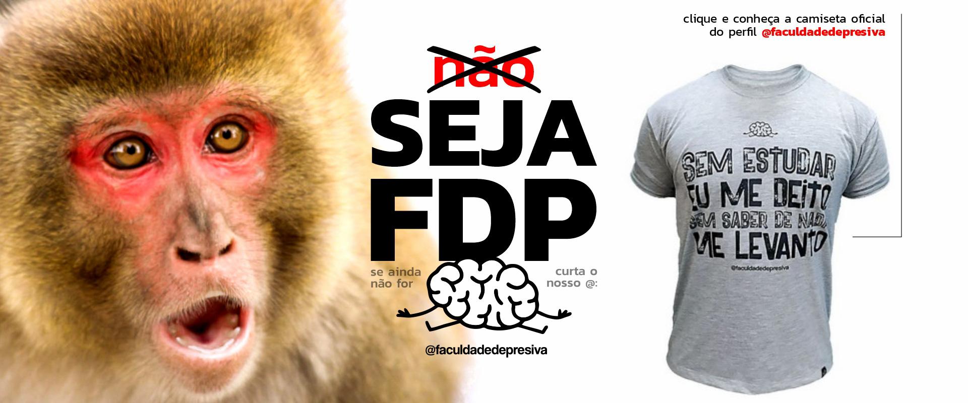 Banner fdp 01