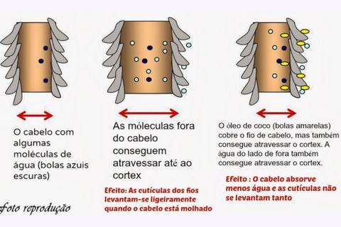 efeitos oleo de coco dermabel - cósmetico