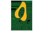 Papaya Editora