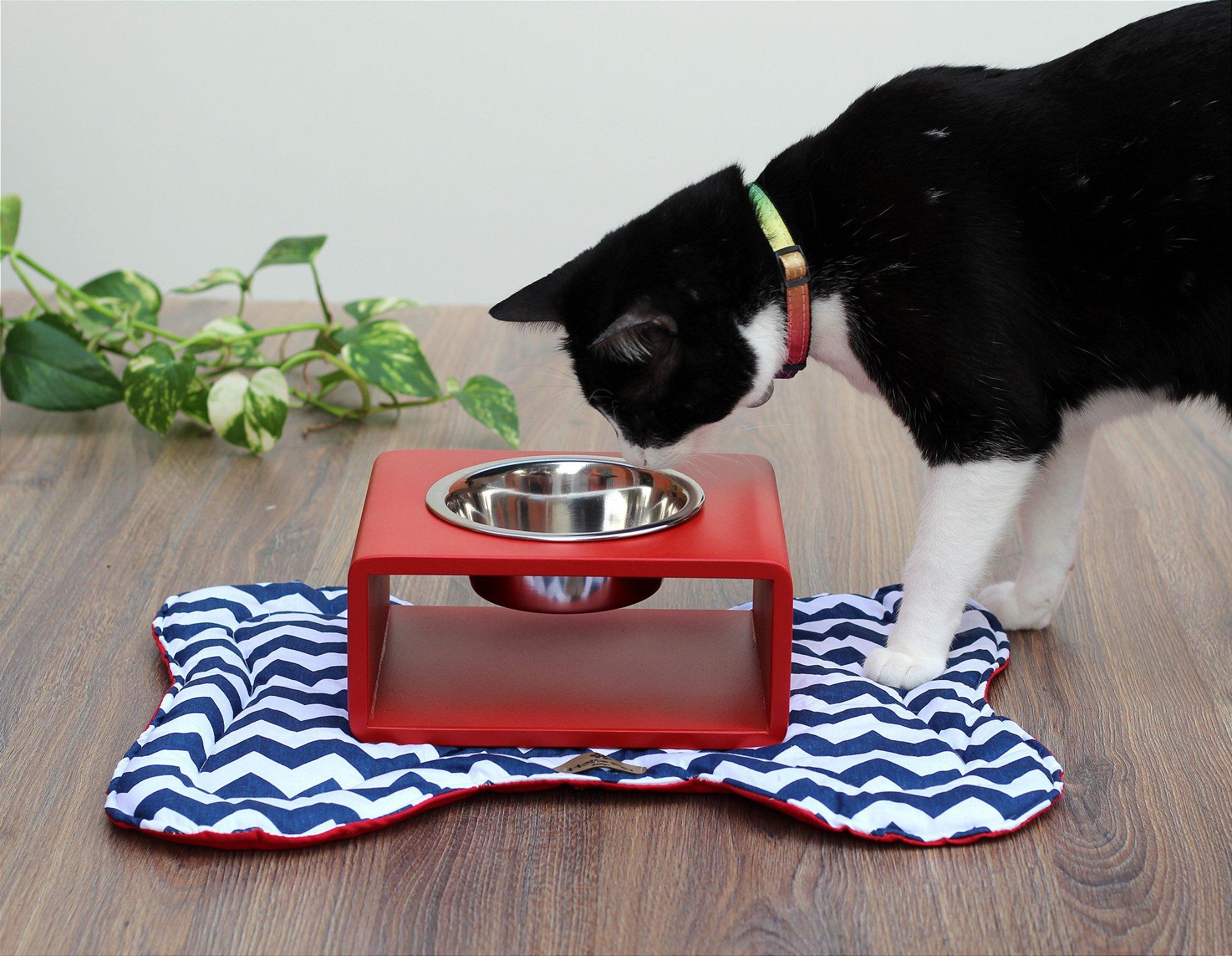 Gato comendo do comedouro modern.