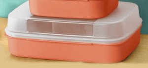 Tupperware Visual Box Grande 2,3 litros Laranja