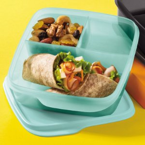 Tupperware Basic Line Com Divisórias Mint 550ml