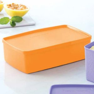 Tupperware Caixa Ideal Mango 1,4 litro