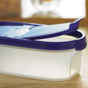 Tupperware Modular Espacial Oval 500ml Roxo