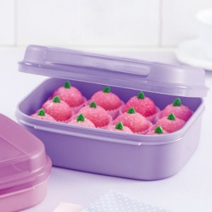Tupperware Visual Box Pequeno 1,1 litro Roxo