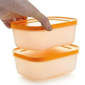 Tupperware Freezer Line 450ml Kit 2 peças