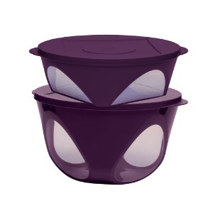 Tupperware Tigela Outdoor kit 2 Peças
