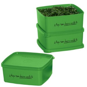 Tupperware Jeitosinho Cheiro Verde 400ml kit 3 peças