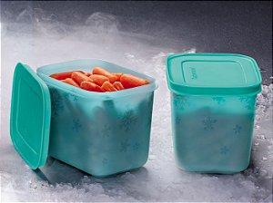 Tupperware Freezer Line Mirtilo 1,1 lItro kit 2 peças