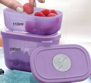 Tupperware Kit Freezertime Roxo 2 Peças 110ml 290ml