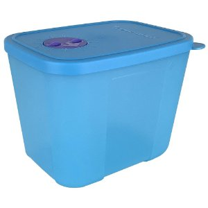 Tupperware Freezertime 1 litro Azul
