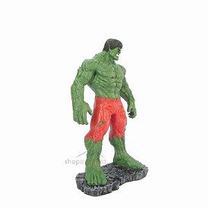Boneco Incrível Hulk EXG