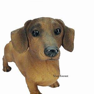 Cachorro Basset Grande Decorativo Marrom- Pode Ficar No Tempo.