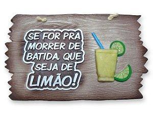 Placa Se For Pra Morrer De Batida , que seja de Limão !