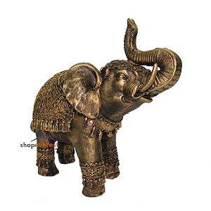 Elefante - Sabedoria - Sorte - Prosperidade -  Grande