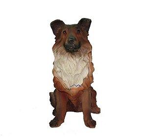 Cachorro Border Collie Decorativo - Pode Ficar Ao Tempo.